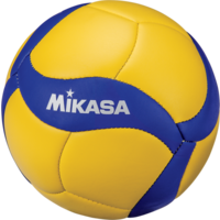 Mini Replica Volleyball