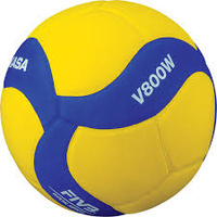 FiVB V800W Official Soft Skin Ball