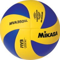 Volleyball Indoor Olympic Ball Sz 5
