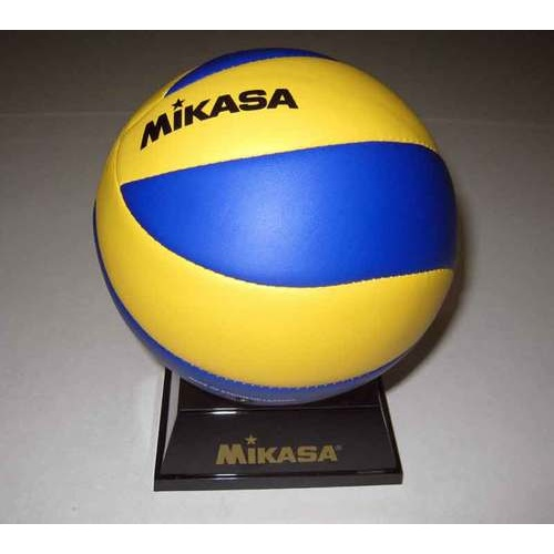 Promotional Volleyball